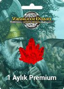 Vikingler Diyarı 1 Aylık Premium