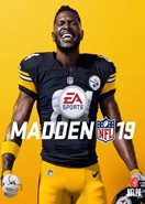 Madden NFL 19 Origin Key