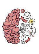 Google play 100 TL Brain Test Şaşırtıcı ve Eğlenceli Zeka Oyunları